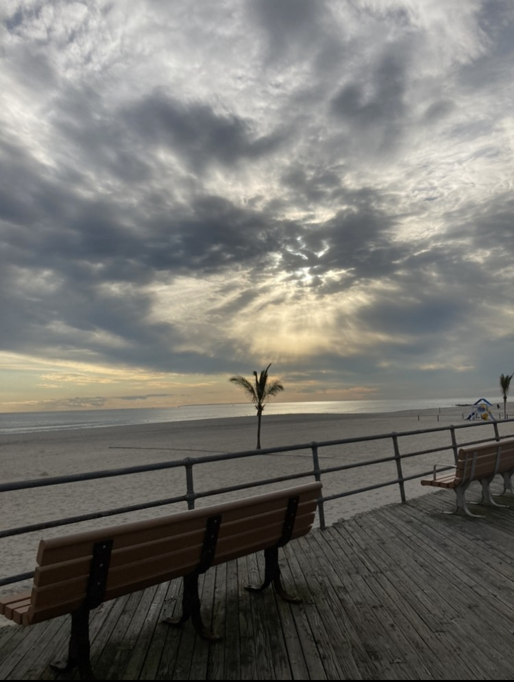 A palm tree and sand at Atlantic Beach Boardwalk, New York.