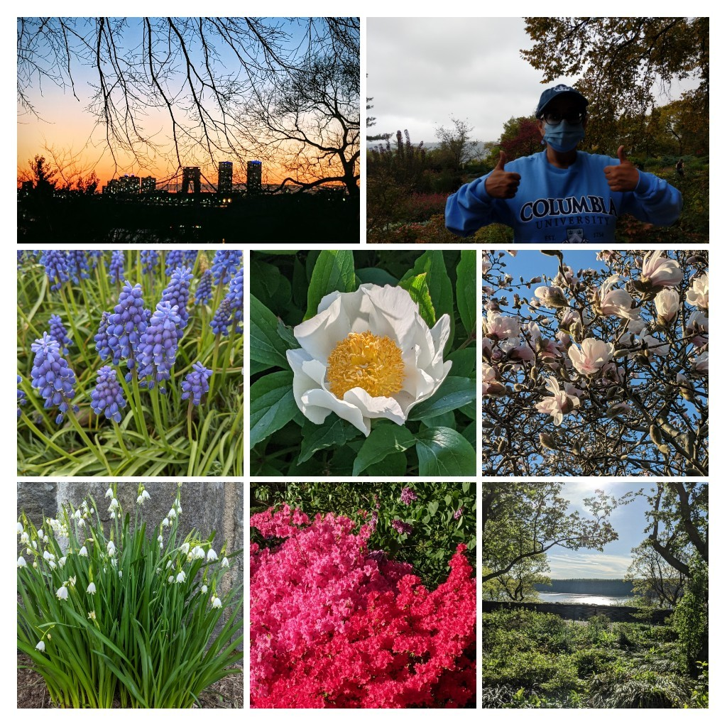A collage of photos from Fort Tryon Park in New York City