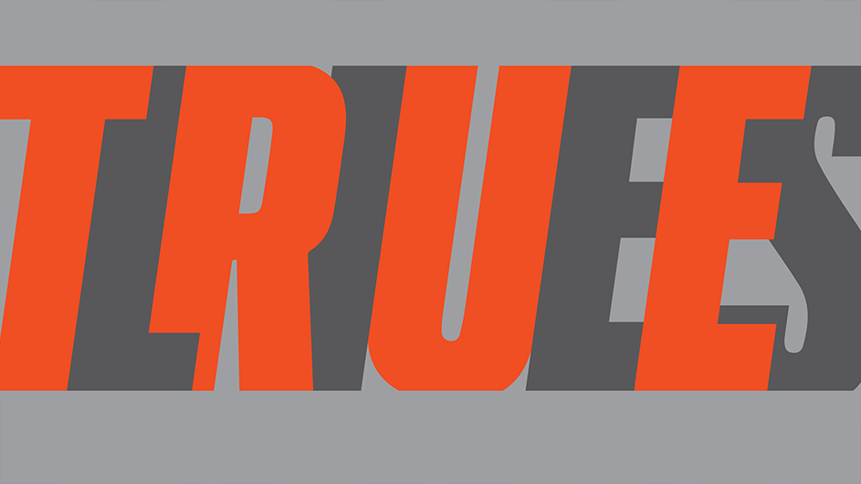 "The text ""TRUE LIES"" in orange and gray letters."