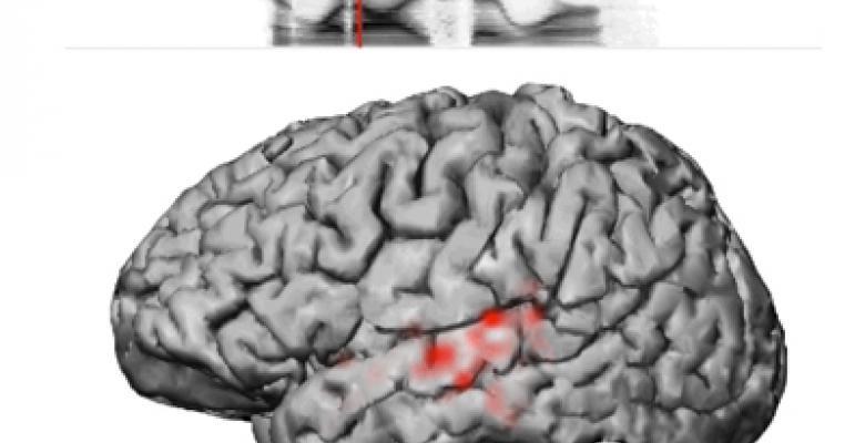 Neuroscience News | Columbia News