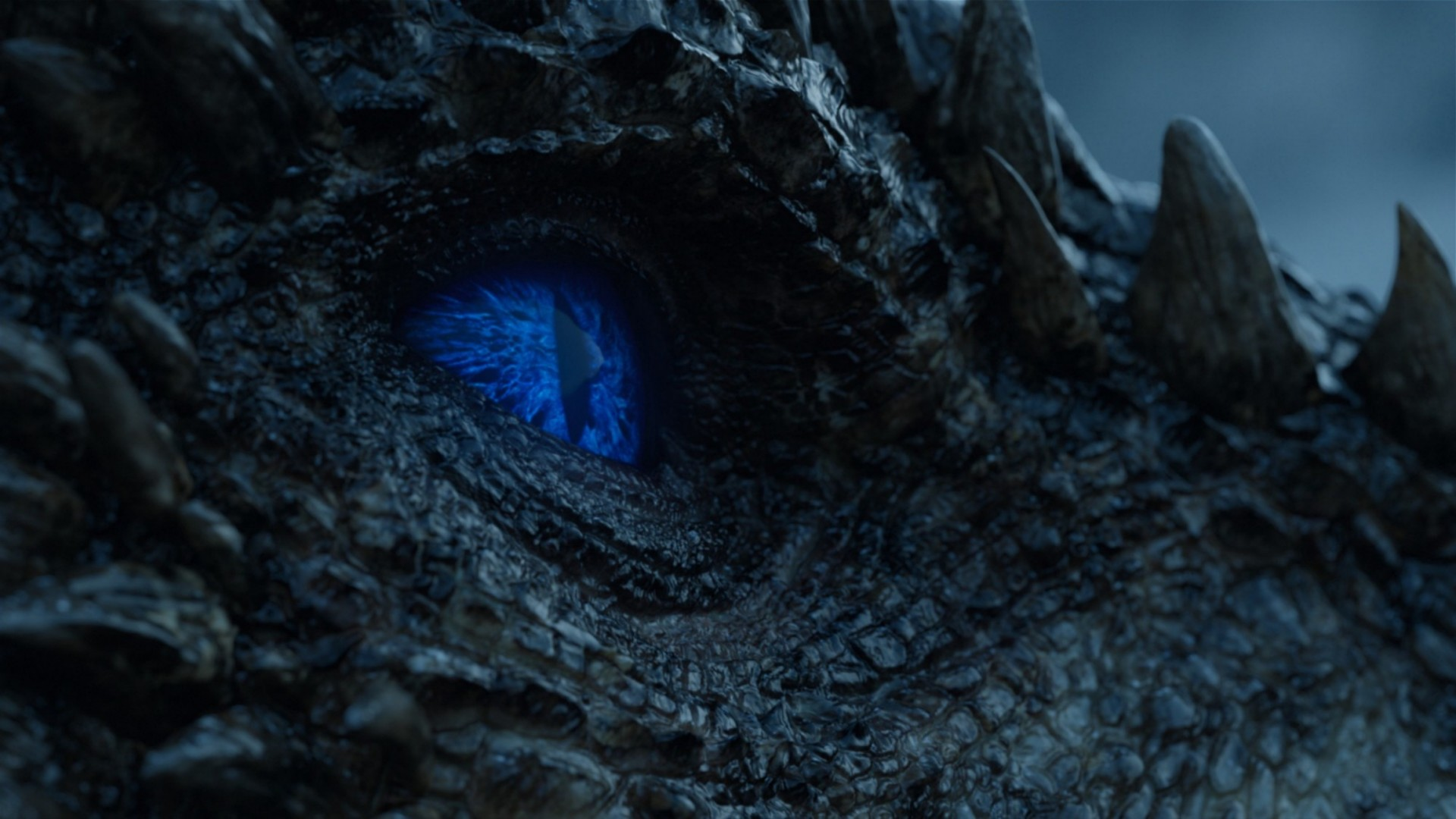 A close-up image of a dragon's scaly face and stark blue eye.