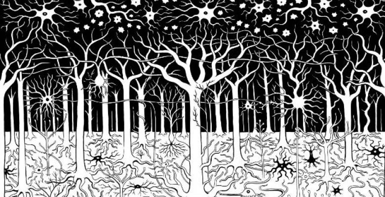 An illustration of neurons as trees