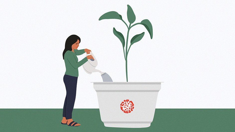graphic of young woman with green shirt and brown hair watering oversized green plant in white planter with orange logo