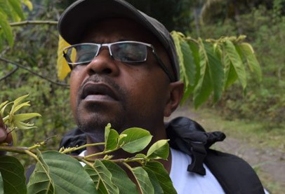 Black man in black cap and sunglasses surrounded by green plants